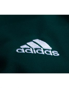 detail-jersey-mexico-home-piala-dunia