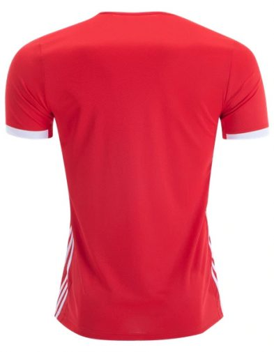Jersey Befica Home Back 2019-2020